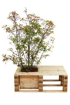 #Pallet bench with built in planter - dunway.info/...