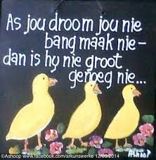 As jou droom jou nie bang maak nie- Afrikaanse Quotes, 90th Birthday, Garden Art, Pallets, South Africa, Decoupage, Poems, Motivational, Language