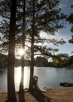 17 Best Weddings at Sylvan Lake images in 2014 | Sylvan lake