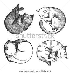 sleep flat design cat - Google Search