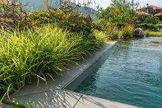 Schwimmteich mit modernem Charakter, geradliniger Schwimmbereich und organische Regenerationszone. Moderne Bepflanzung mit Stauden im Garten. Moderne Pools, River, Outdoor, Water Pond, Shade Perennials, Planting, Swimming, Landscaping, Outdoors