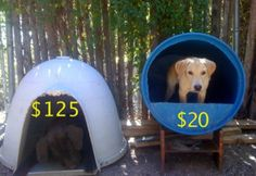 diy-dog-house-from-plastic-barrel Hershey would be happier with the barrel.