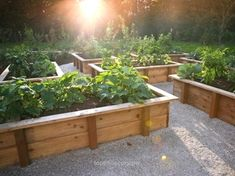 Magnificent raised bed gardens | 20 Raised Bed Garden Designs and Beautiful Backyard Landscaping Ideas The post raised bed gardens | 20 Raised Bed Garden Designs and Beautiful Backyard Landsca… appeared first on Home Decor .