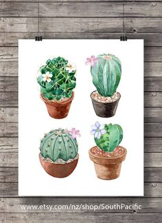 Landscaping Without Grass Info: 9379846629 Watercolor Succulents, Watercolor Cactus, Watercolor Landscape, Watercolor Paintings, Cactus 2, Cactus Decor, Indoor Cactus, Cactus Plants, Silvester Trip