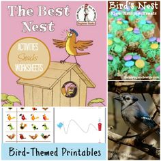 31 Days of Read-Alouds: The Best Nest including activities, recipes, and free printables to extend the lesson! | The Happy Housewife