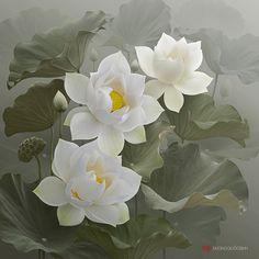 Lotus+by+duongquocdinh.deviantart.com+on+@DeviantArt