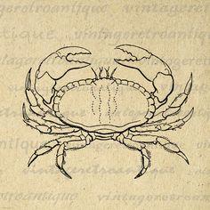Digital Crab Graphic Printable Ocean Artwork Download Sea Image Jpg Png Eps 18x18 HQ 300dpi No.587 @ vintageretroantique.etsy.com