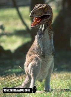 (2011-06) T-rex + kangaroo = troo?
