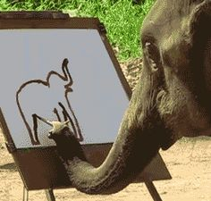 Elephant Painting An Elephant Is Definitely Not Irrelephant