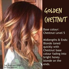 Hair style - Golden Chestnut :: blonde toned quickly with chestnut base colour fading into bright honey blonde on the ends Medium Hair Cuts, Medium Hair Styles, Curly Hair Styles, Wavy Haircuts Medium, Chestnut Hair, Hair Color And Cut, Haircut And Color, Great Hair, Hair Highlights