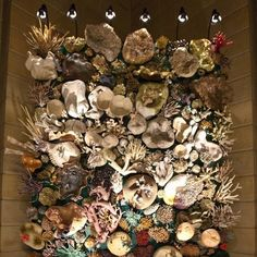Shell Craft wall- a coral reef! Dollar store shells= amazing wall art