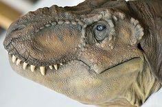 T-Rex Dinosaur Skeleton, Dinosaur Art, Dinosaur Fossils, Dinosaur Toys, T Rex Jurassic Park, Jurassic Park World, Alien Creatures, Prehistoric Creatures, Jurrassic Park