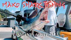 Mako Shark Fishing Tasmania Australia