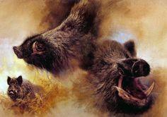 Wild boar (Sus scrofa) by Rien Poortvliet (Dutch, 1932-1995).