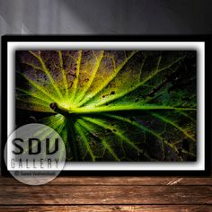 Downloadable Abstract, Digital Photo, Printable Wall Art, Dream, Leaf, River, Sunlight, Water, Spring, Forest, Light, Vienna, Austria Forest Light, Spring Forest, Leaf Photography, Vienna Austria, Photo Tree, Landscape Photos, Nature Photos, Printable Wall Art, Sunlight