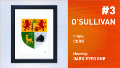 O'Sullivan is the 3rd Most Popular Irish Surname. Order your Coat of Arms at www.paintedclans.com. Hand Painted Modern Irish heraldry. Wedding or Anniversary Gift.