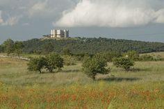 Parco Nazionale ecosostenibile Puglia:Parco Nazionale Alta Murgia