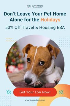 """Want to legally bring your pet everywhere you live and travel? You can with an ESA (Emotional Support Animal) Approval - Doctor Approved ESA Certifications from Real Doctors Sent Fast. - Rent and live with your pet anywhere, even if they have a """"No Pets"""" policy - Bring your pet in a taxi or on a train - Save money by eliminating costly pet deposits and fees. 100% Money Back Guarantee - 24-48 Hrs Delivery - 99% Acceptance. house pet, the dog, cat colors, sylvester the cat, pet sitter gifts First Time Cat Owner, Sylvester The Cat, Newborn Fashion, Emotional Support Animal, Single Moms, Camo Baby Stuff, Cat Colors, Instagram Influencer, Family Dogs"""