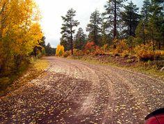 Outside Pagosa Springs, Colorado