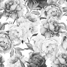 """Found it at Wayfair.ca - Clara Removable 5' x 20"""" Floral Wallpaper"""