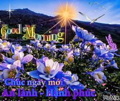 Good Morning Song, Good Morning Quotes, Make Me Smile Quotes, I Smile, Gifs, Presents