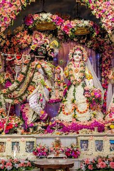 Marvelous Pusya Abhishek 2020 in Mayapur (Album of photos) - krishna Radha Krishna Songs, Krishna Lila, Cute Krishna, Krishna Statue, Lord Krishna Images, Radha Krishna Pictures, Radha Krishna Photo, Radha Krishna Love, Krishna Photos