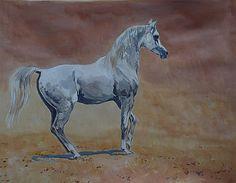 Peter Upton - Half-rearing Grey Stallion