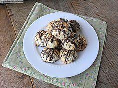 Sugar Free Coconut Recipes