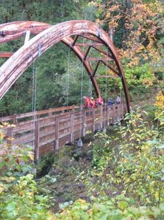 The Wilson River Trail is an easy, convenient hike for amazing fall colors. Hikes Near Portland, Oregon Falls, Oregon Territory, River Trail, Covered Bridges, Go Outside, Pacific Northwest, Garden Bridge, Travel Inspiration