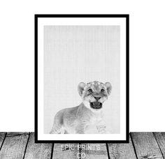 "Lion Cub - Printable lion, Printable nursery art, decor, instant download, safari, lion art, baby decor, lion print by Epicprintsco  5.00 USD  An amazing instant digital download, printable in an array of sizes.  *** INCLUDED FILES ***  1- Instruction sheet 2- 2:3 ratio .jpg for printing 8x12"",  20x30"", 10x15cm,  20x30cm, 30x45cm, 50x75cm 3- 3:4 ratio .jpg for printing 6x8"",  9x12"",  12x16"",  18x24"",  30x40cm 4- 4:5 ratio . ..  https://www.etsy.com/ca/listing/290634881/lion-cub-pri.."