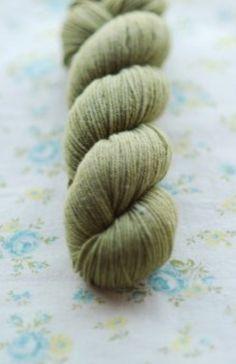 Tern- Seagrass