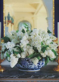 beautiful white flowers in blue & white