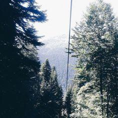 #nature #beautiful #green #landscape #summer #sun #sky #travel #forest #vscocam #vsco #instanature #life #adventure #picoftheday #tree #trees #wood #лес #russia #природа #photo #лето #отдых #солнце #горы #деревья #прогулка #пейзаж #небо by n.tuan1a