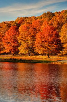 New Haven County, CT | 21 Insanely Beautiful Spots To See Fall Colors Around The Country