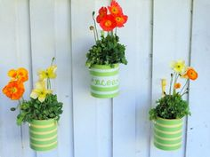 Home-Dzine - How to recycle coffee and paint tins into attractive plant holders for your favourite flowers