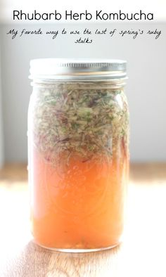 Kombucha recipe with rhubarb and herbs
