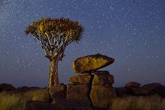 Waar wij door lichtvervuiling 's nachts met moeite een paar sterren kunnen zien, kan tijdens de pikdonkere Namibische nachten genoten worden van de spectaculairste hemellandschappen. Om te laten zien wat voor moois wij in het westen moeten missen, maakte natuurfotograaf en reisgids Marsel van Oosten een time-lapse filmpje samengesteld uit ruim 16.000 afzonderlijke opnamen (30 per seconde) die gedurende twee jaar tijd zijn geschoten. Hij won er, met recht, de eerste prijs mee bij de Travel…