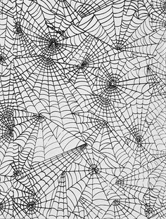 spider's webs........