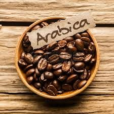 I am talking about Arabica Beans and where they are located and why they were located there.Also to talk about cultivation and use of Arabica Beans.