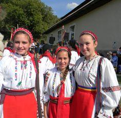 traditional - taralapusului
