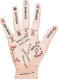 Étiez-vous au courant que les lignes de vos mains cachaient des secrets sur votre avenir ? Il parait ... >>