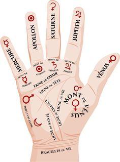 Lo que tus manos revelan sobre ti - Bilder Les Chakras, Palm Reading, Relaxing Yoga, Relaxation, Palmistry, Qigong, Alternative Health, Book Of Shadows, Yoga Meditation