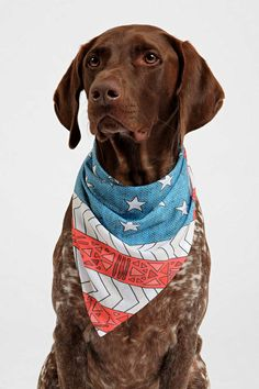 Bianca Green For DENY USA Pet Bandana - Urban Outfitters 83918f953