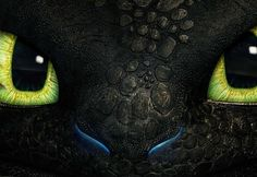 how to train your dragon 2 - Toothless pinning this under animals because he reminds me of my cat