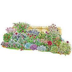 Dry Shade Garden Plan                                                                                                                                                     More