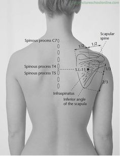 Massage back's scapula for milk and also pinky nail