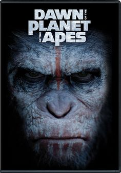 Directed by Matt Reeves. With Gary Oldman, Keri Russell, Andy Serkis, Kodi Smit-McPhee. A growing nation of genetically evolved apes led by Caesar is threatened by a band of human survivors of the devastating virus unleashed a decade earlier. Gary Oldman, Bon Film, Great Movies, New Movies, Movies Online, Movies 2014, Watch Movies, Dawn Of The Planet, Sci Fi Movies