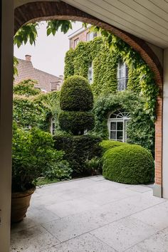 The magnificent terrace garden of a townhouse in Bruges - Garden Care, Garden Design and Gardening Supplies Landscape Design, Garden Design, Terrace Design, Townhouse Garden, Small Courtyards, Garden Types, Garden Architecture, Terrace Garden, Garden Plants
