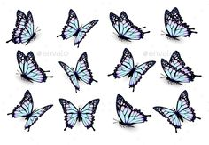 Collection Of Blue Butterflies Flying In Different Directions. Vector Fully edit… Collection Of Blue Butterflies Flying In Different Directions. Vector Fully editable, vector objects separated and grouped, gradie - Tattoo Blue Butterfly Tattoo, Butterfly Outline, Butterfly Drawing, Butterfly Tattoo Designs, Mariposa Butterfly, Butterfly Stencil, Butterfly Tattoo Meaning, Simple Butterfly, Butterfly Illustration