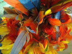 Indios do Brasil, Campo Grande, Museu das Culturas Dom Bosco, Mato Grosso do Sul, Brasil Tocado con plumas, headdress
